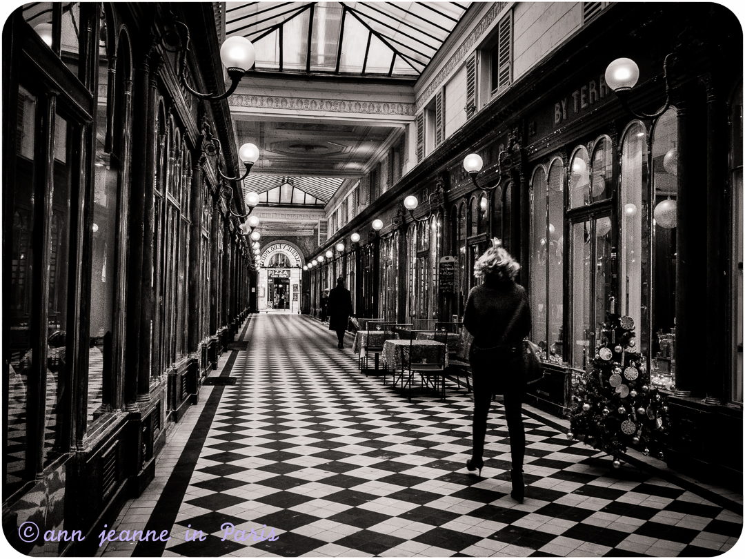 Walking In A Paris Covered Passage
